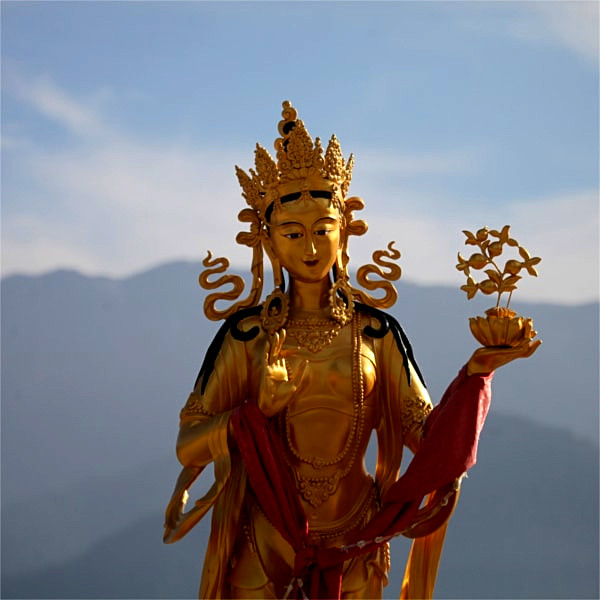 6 Days cultural sightseeing tour in Bhutan