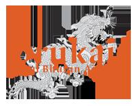 Drukair Bhutan